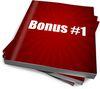 Bonus nr 1